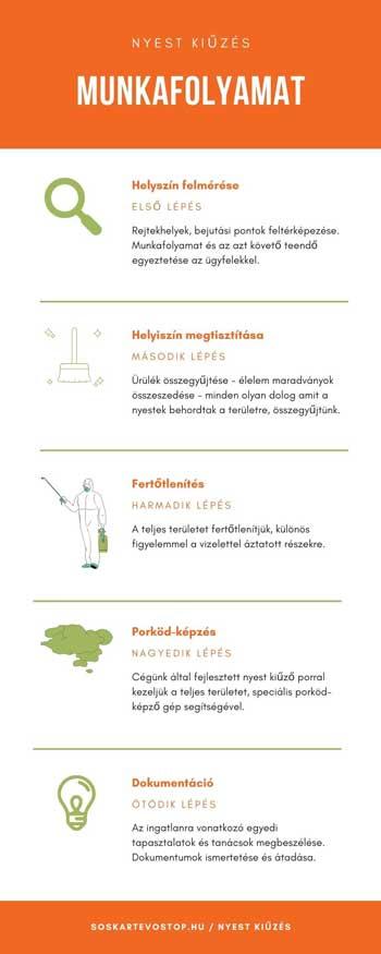 nyest-infografika